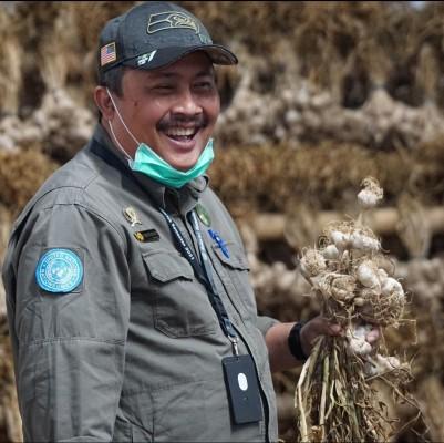 Benih Berkualitas Dorong Bawang Putih Lokal Berkembang Pesat di Lereng Gunung Sindoro-Sumbing